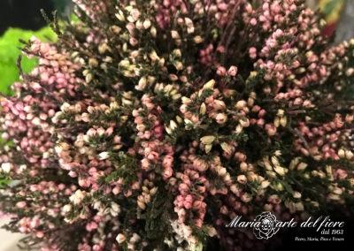 Maria-Arte-Del-Fiore-Fornitura-di-Rose-stabilizzate-Fiori-Verdi-Muschi-Licheni-stabilizzati_25
